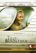 The Trip to Bountiful (TV)
