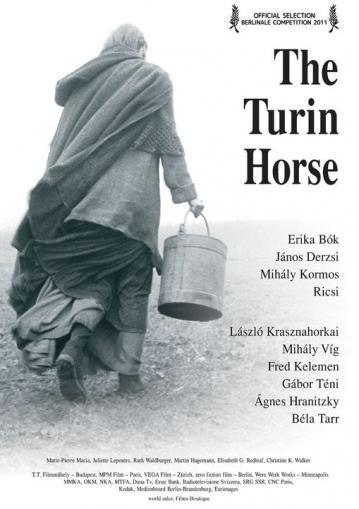 the_turin_horse-119826669-large.jpg