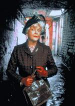 La señora Pollifax (TV)
