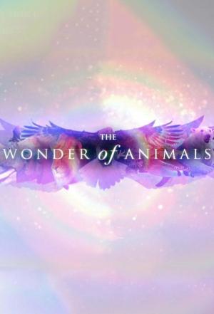 Animales maravillosos (Serie de TV)