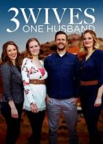 Three Wives, One Husband (Serie de TV)