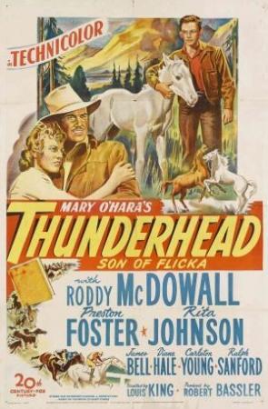 Thunderhead, hijo de Flicka