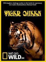 Tiger Queen (TV)