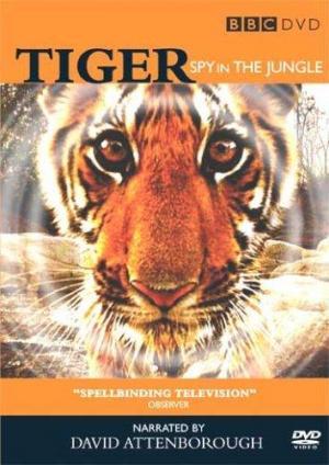 Tiger: Un espía entre los tigres (Miniserie de TV)