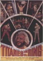 Titanes en el ring: The movie