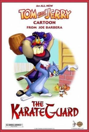 The KarateGuard (C)