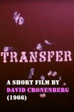 Transfer (C)