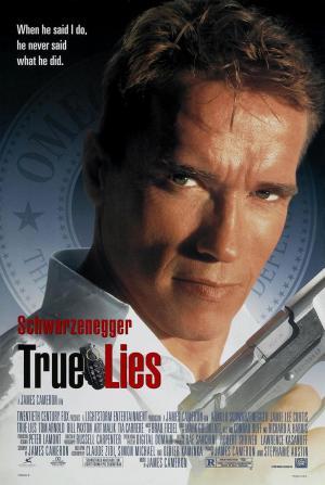 póster de la película mentiras arriesgadas