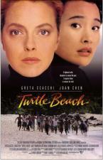 La playa de las tortugas