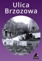 Vieja Brzozowa (C)