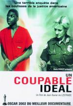 Un culpable ideal (Un coupable idéal)