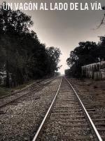 Un vagón al lado de la vía (C)