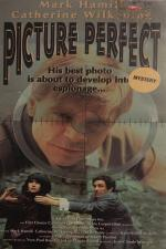 Picture Perfect (TV)