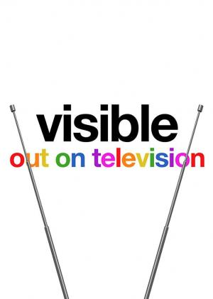 Visible: Out on Television (TV Series)