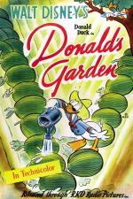 El jardín de Donald (C)
