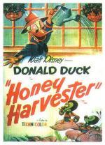Pato Donald: La recogida de la miel (C)