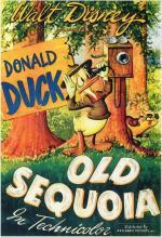 Pato Donald: La vieja secoya (C)