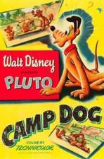 Camp Dog (C)