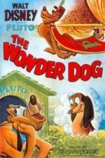Wonder Dog (C)