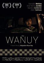 Wañuy (C)