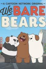 Somos osos (Serie de TV)