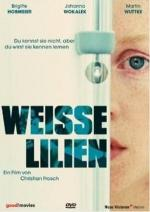 Weisse Lilien (Silent Resident)