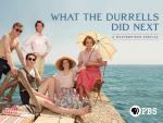 ¿Qué fue de los Durrell? (TV)