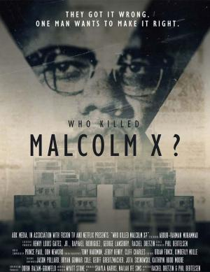 Who Killed Malcolm X? (TV Series)