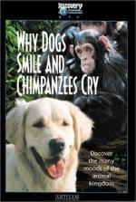 Why Dogs Smile & Chimpanzees Cry (TV)