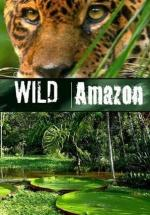 Wild Amazon (Miniserie de TV)