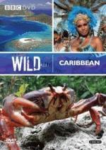 Caribe salvaje (TV)