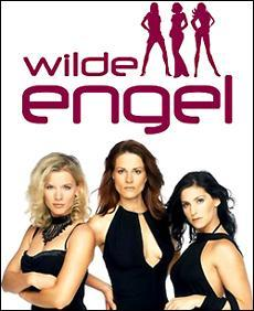 Wilde Engel (TV)