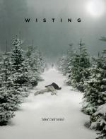 Wisting (TV Series)