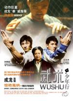 Wushu: The Young Generation (Jackie Chan Presents: Wushu)