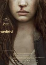 Yardbird (C)