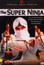 El escuadrón de los ninjas