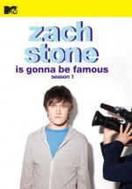 Zach Stone Is Gonna Be Famous (TV Series)