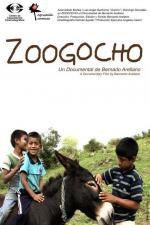 Zoogocho